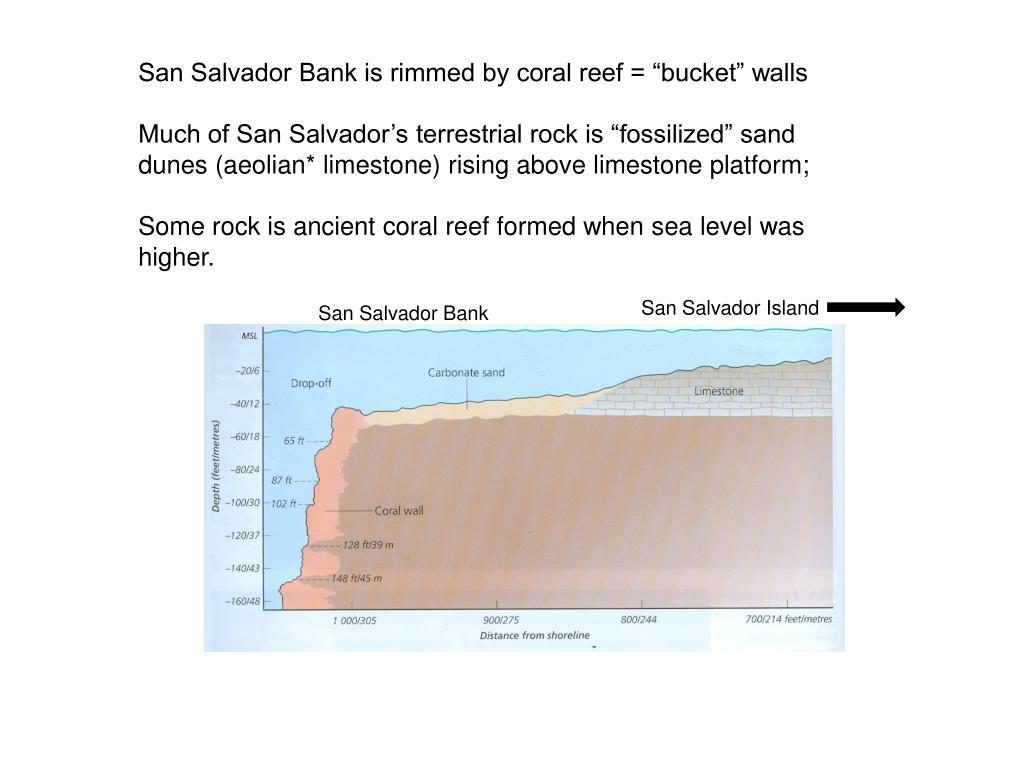 "San Salvador Bank is rimmed by coral reef = ""bucket"" walls"