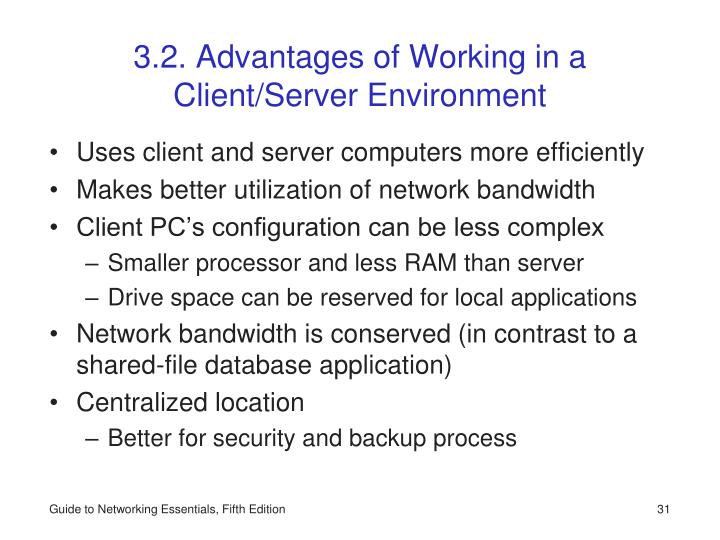 3.2. Advantages of Working in a Client/Server Environment