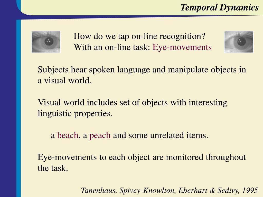 Temporal Dynamics