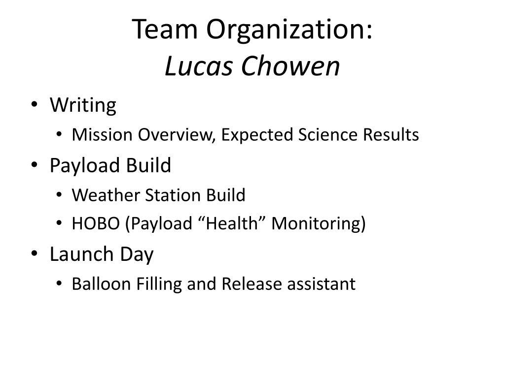 Team Organization: