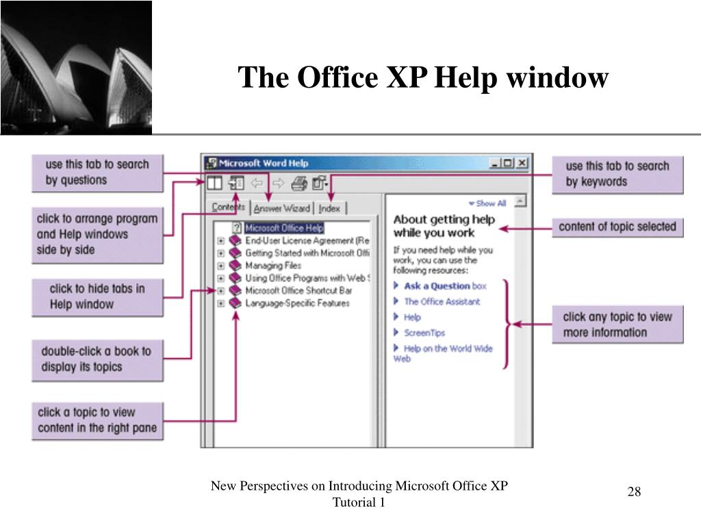 The Office XP Help window