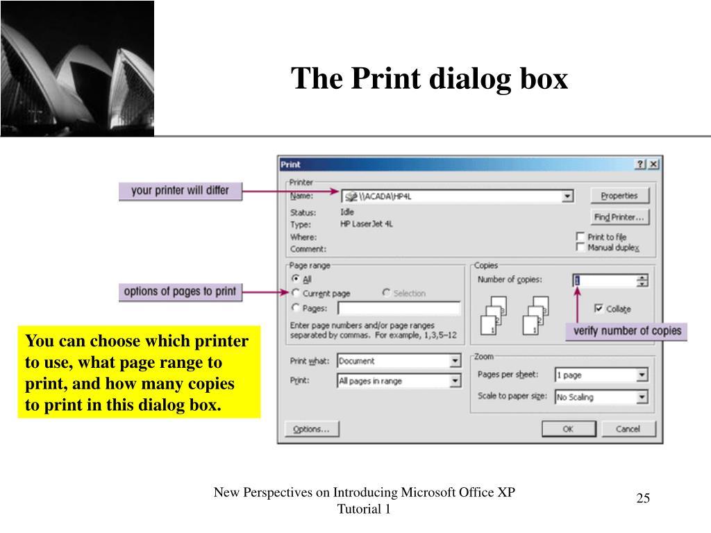 The Print dialog box