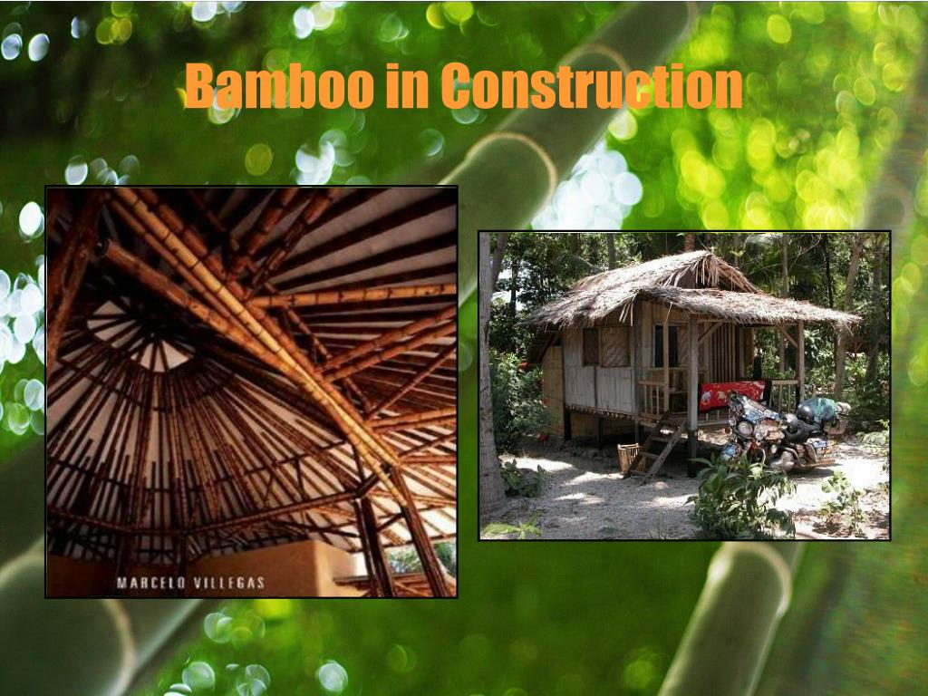 Bamboo in Construction