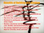 benefits of building with bamboo