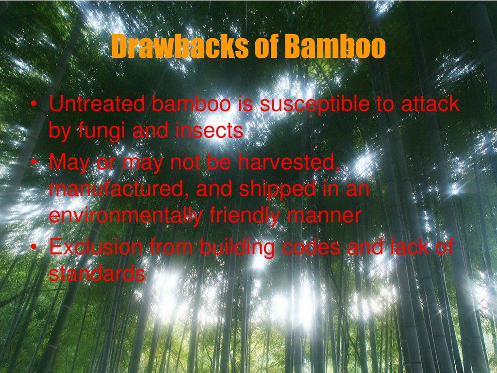 Drawbacks of Bamboo