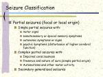 seizure classification