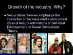 growth of the industry why