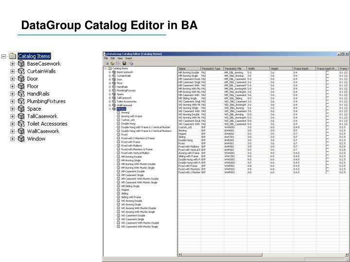 DataGroup Catalog Editor in BA