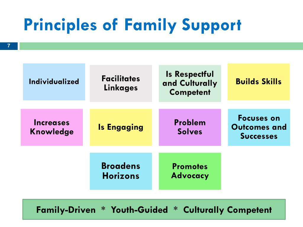 Principles of Family Support