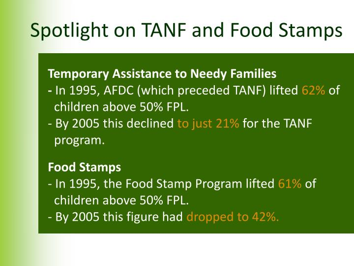 Spotlight on TANF and Food Stamps