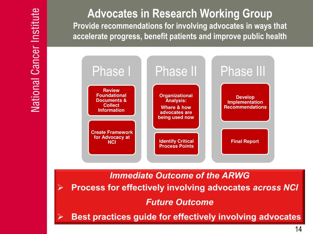 Advocates in Research Working Group