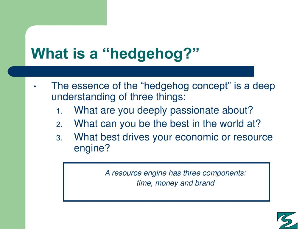 """What is a """"hedgehog?"""""""