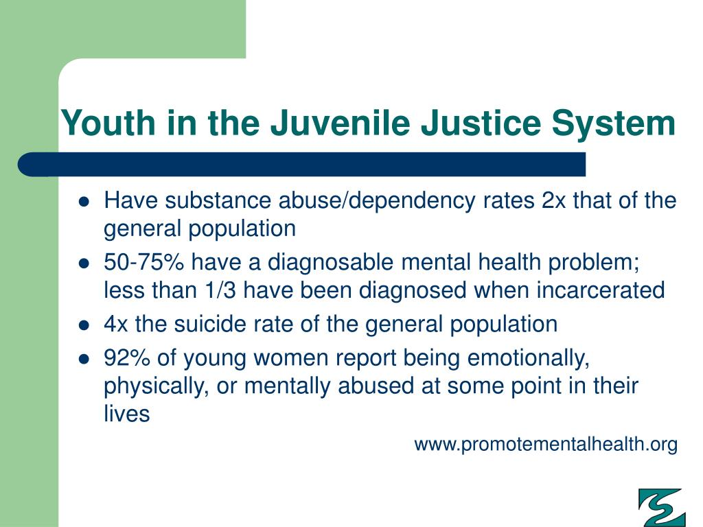 Youth in the Juvenile Justice System