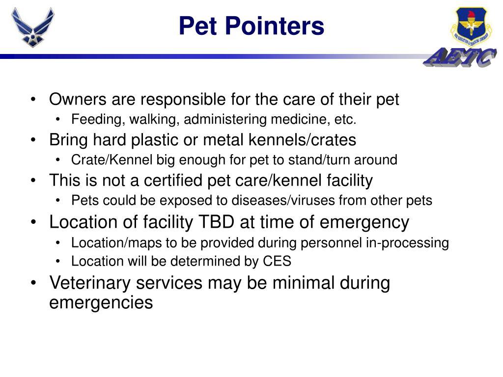Pet Pointers