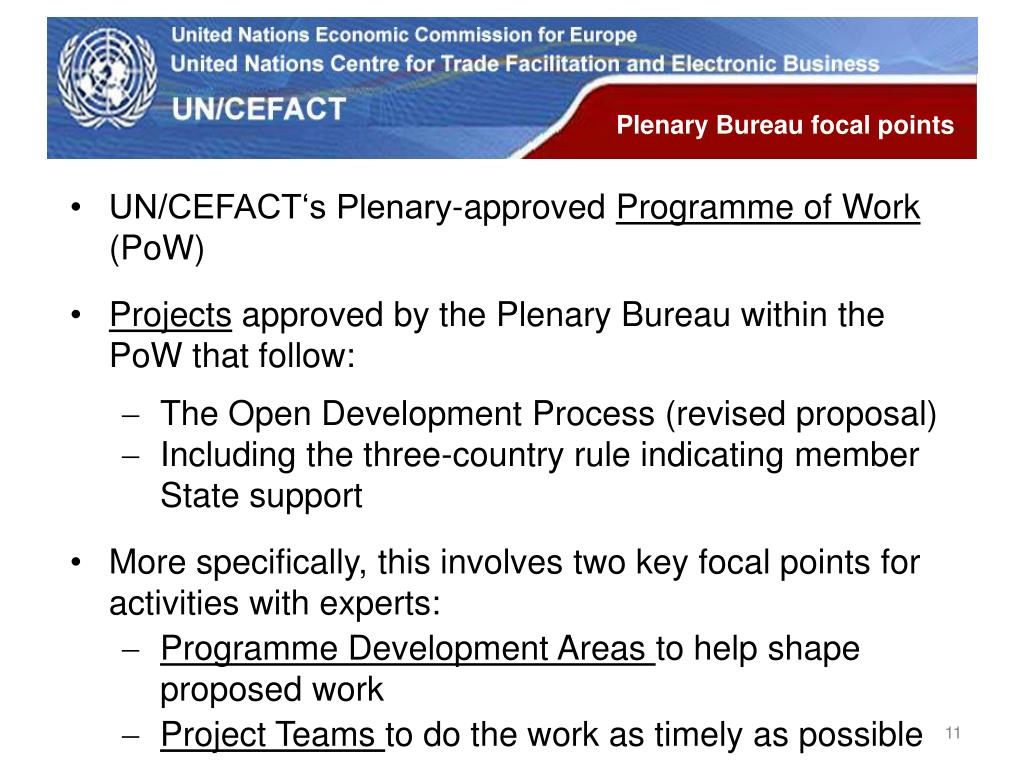 Plenary Bureau focal points