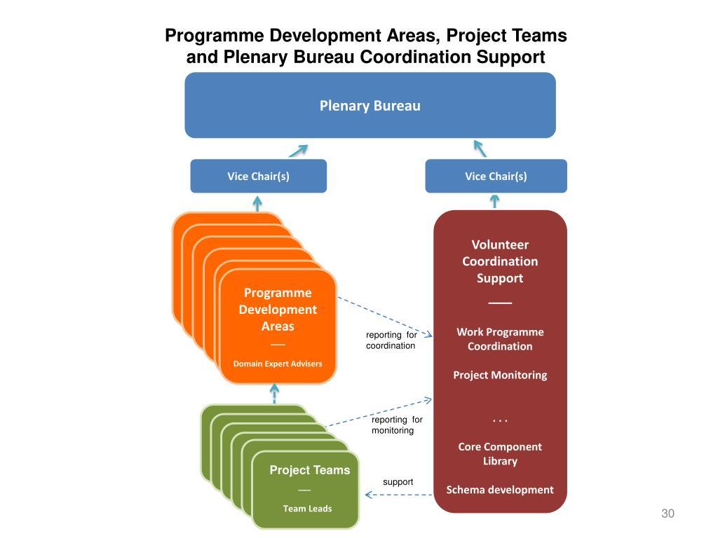Programme Development Areas, Project Teams