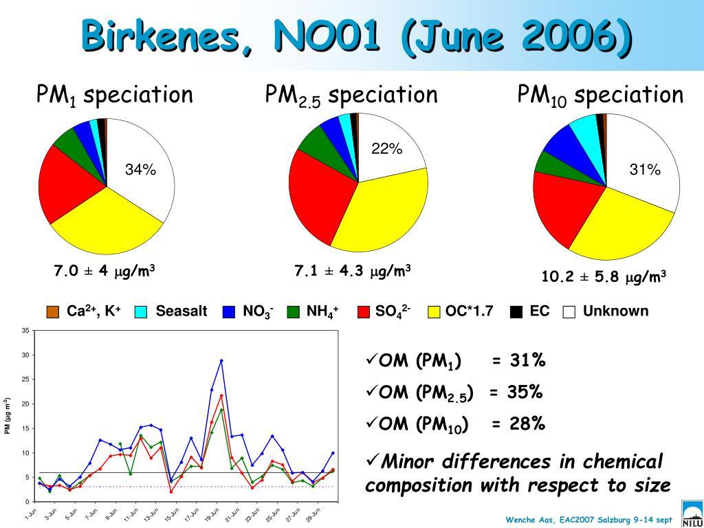 Birkenes, NO01 (June 2006)
