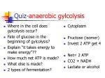 quiz anaerobic gylcolysis