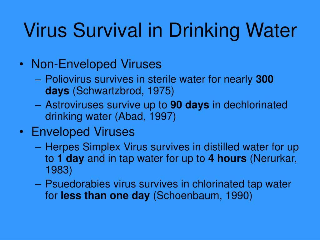 Virus Survival in Drinking Water