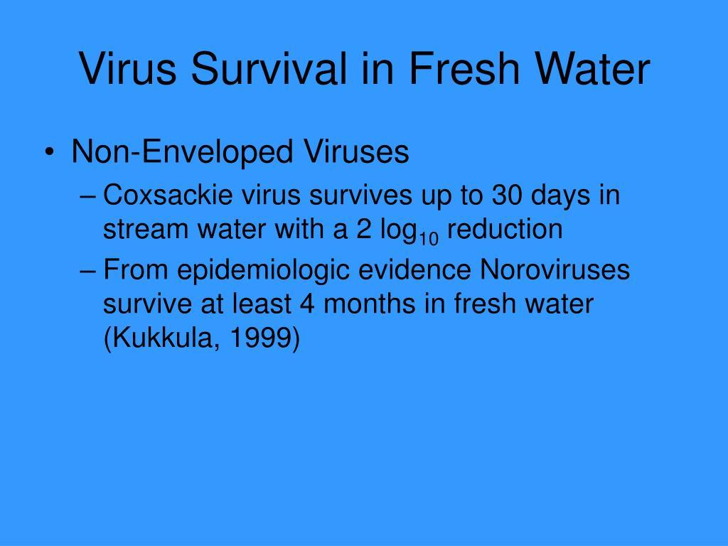 Virus Survival in Fresh Water