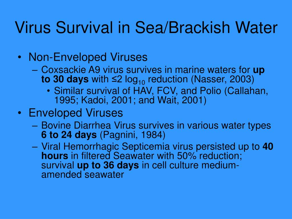 Virus Survival in Sea/Brackish Water