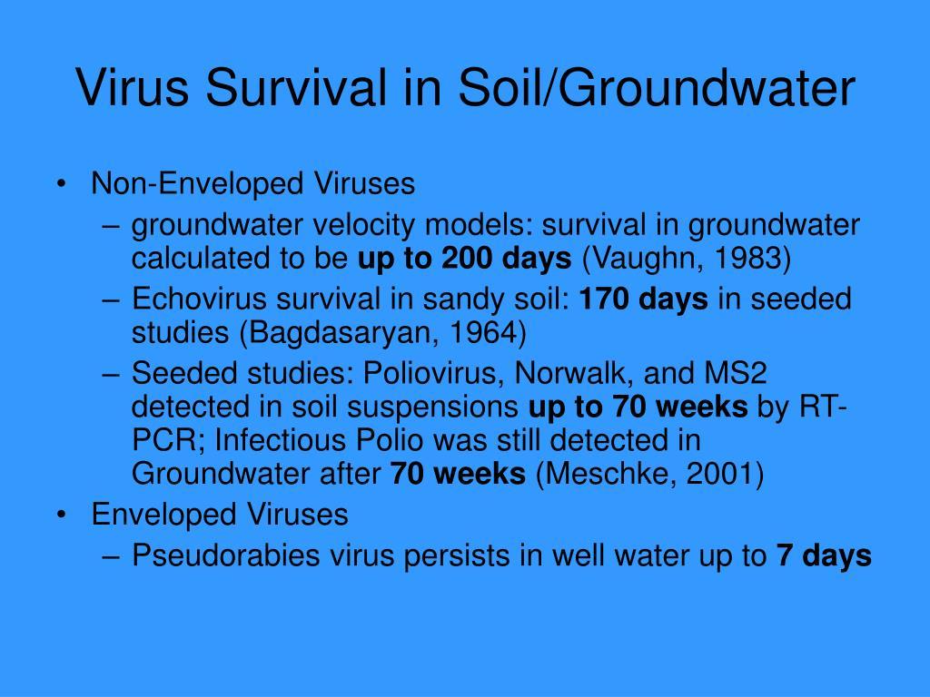 Virus Survival in Soil/Groundwater