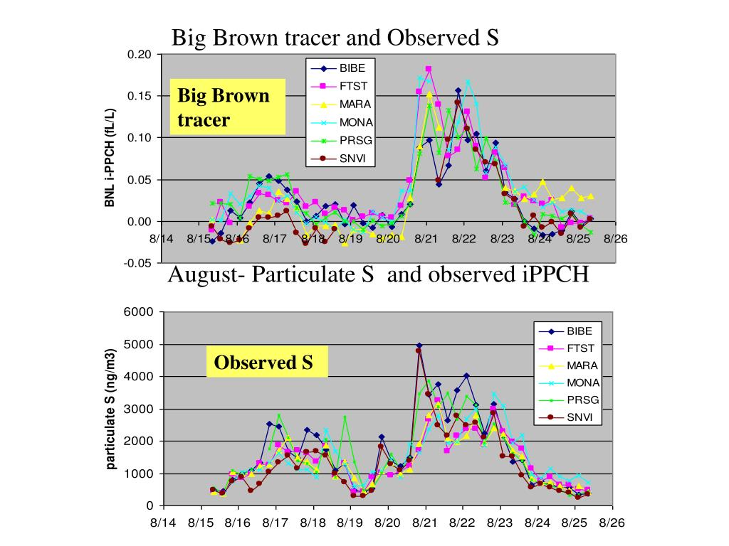 Big Brown tracer and Observed S