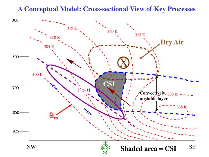 A Conceptual Model: Cross-sectional View of Key Processes