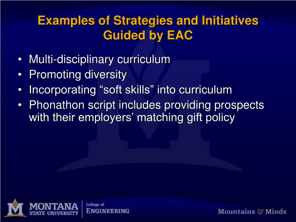 Examples of Strategies and Initiatives Guided by EAC