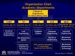 organization chart academic departments