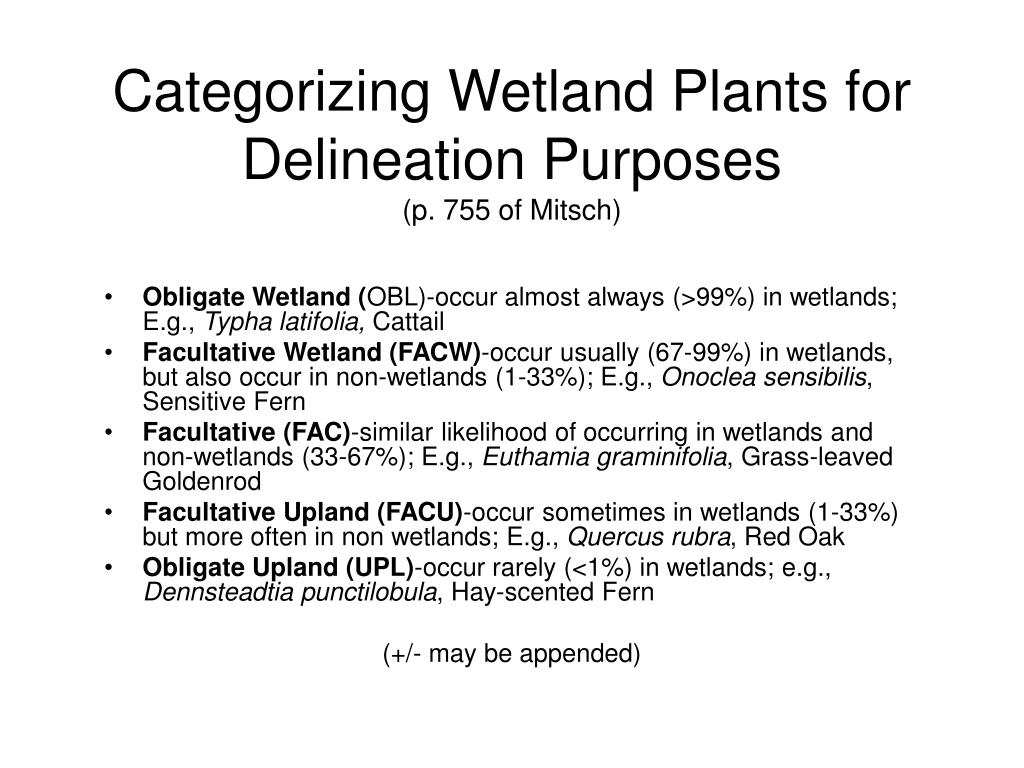 Categorizing Wetland Plants for Delineation Purposes