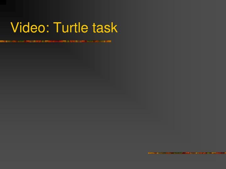 Video: Turtle task