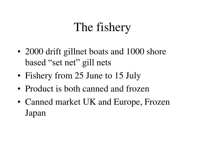 The fishery