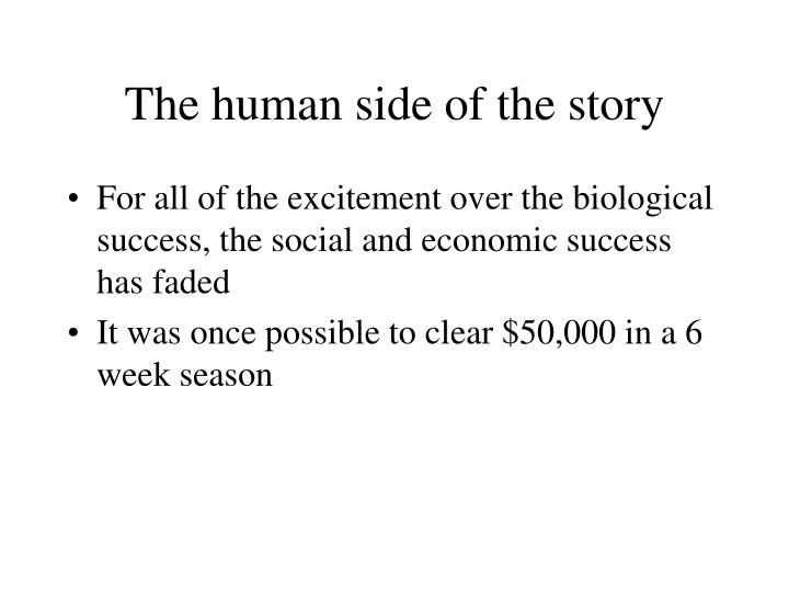 The human side of the story