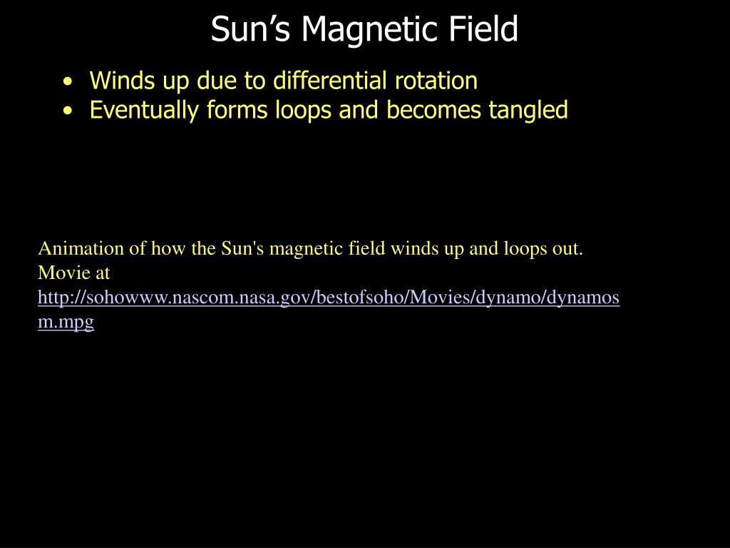 Sun's Magnetic Field
