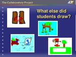 what else did students draw