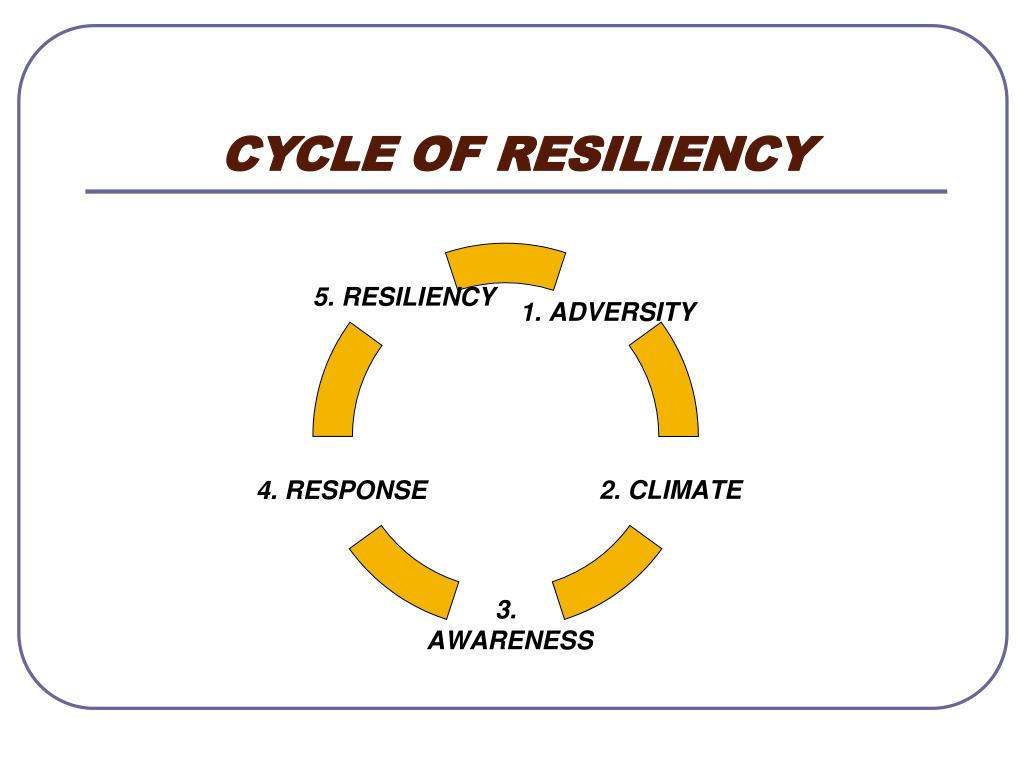 CYCLE OF RESILIENCY