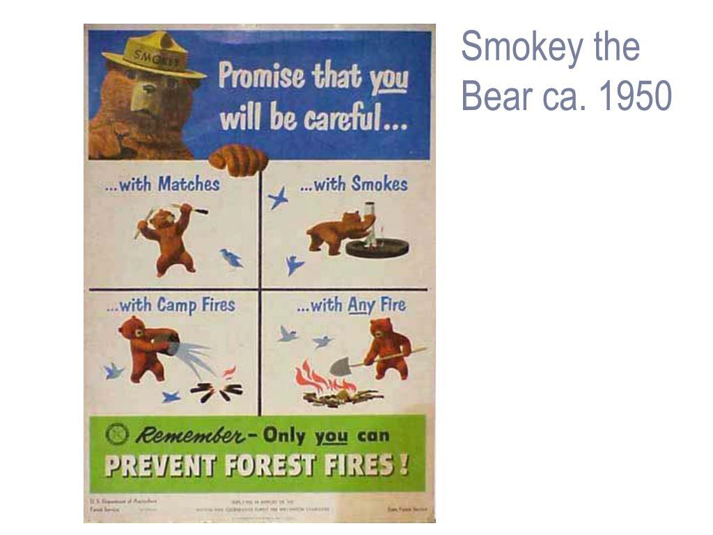 Smokey the
