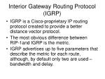 interior gateway routing protocol igrp