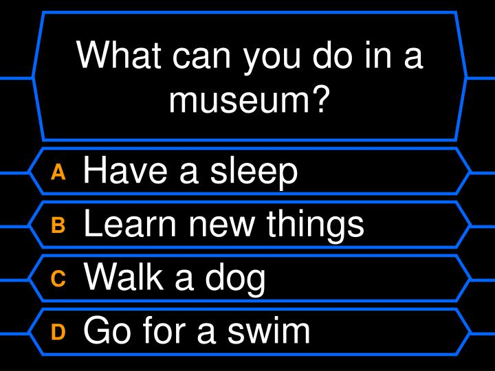 What can you do in a museum?