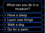 what can you do in a museum