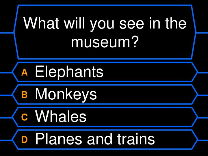 What will you see in the museum?