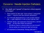 concerns needle injection catheters13