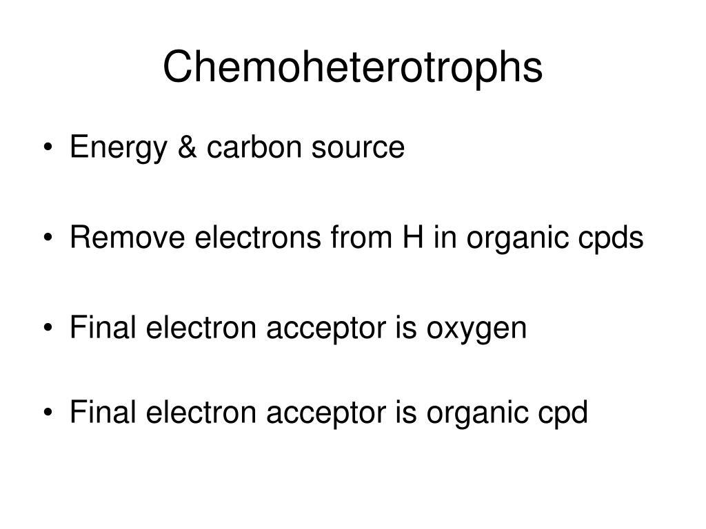 Chemoheterotrophs