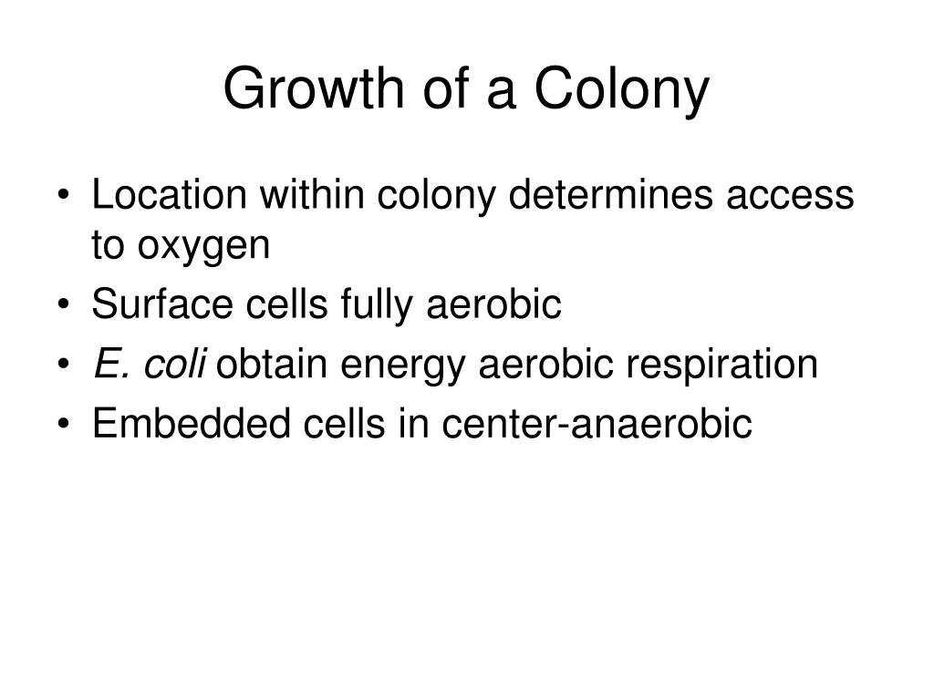 Growth of a Colony