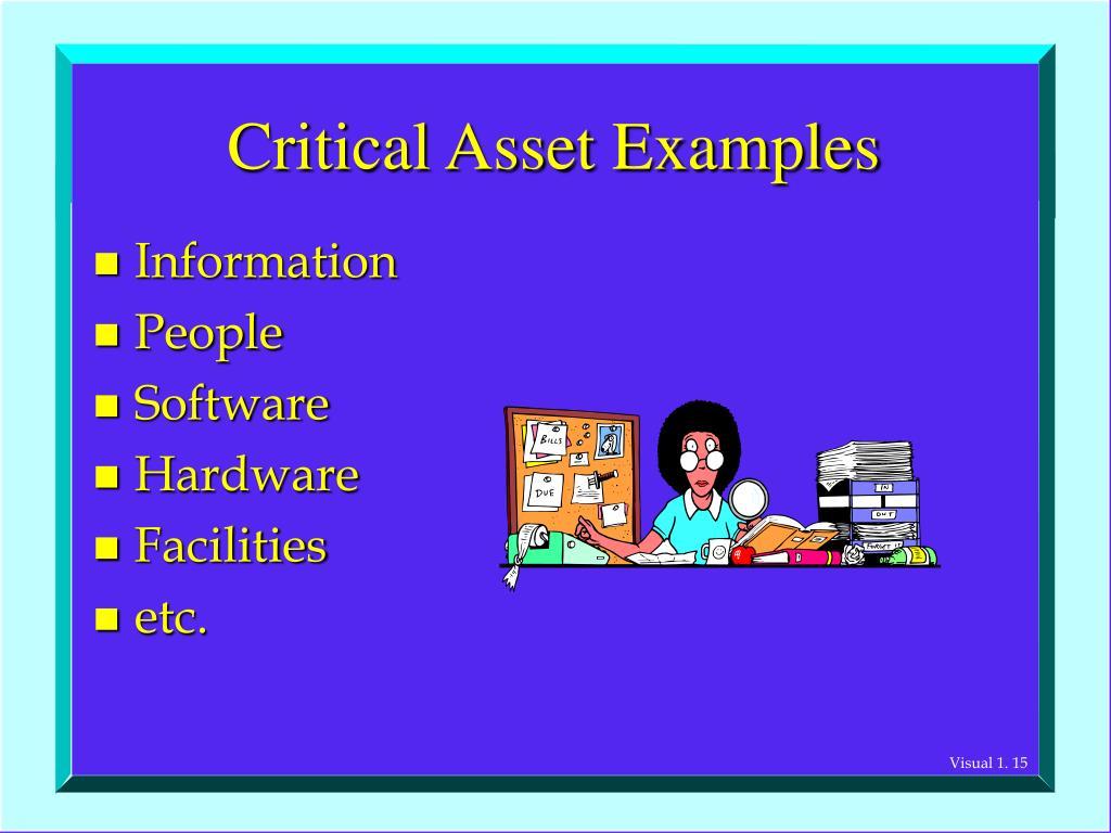 Critical Asset Examples