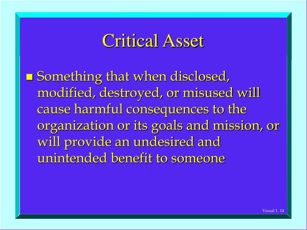 Critical Asset