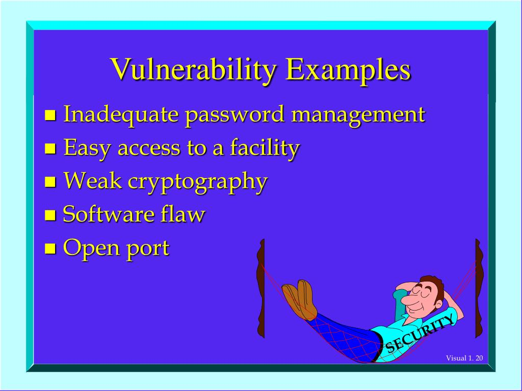 Vulnerability Examples
