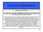 aviation insurance29