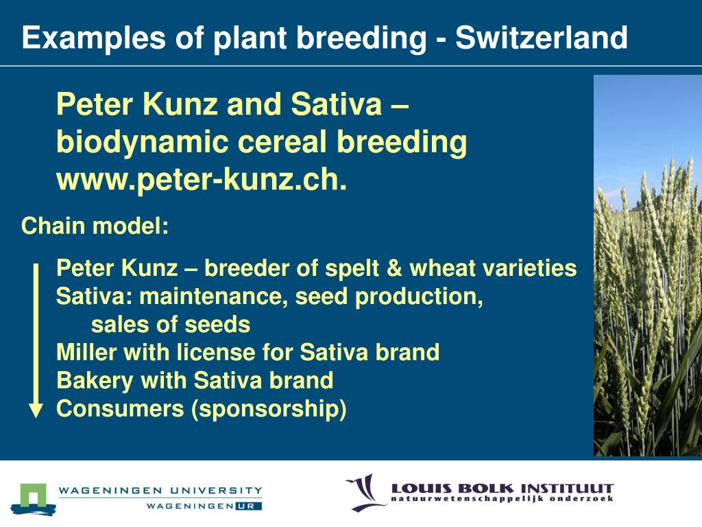 Examples of plant breeding - Switzerland